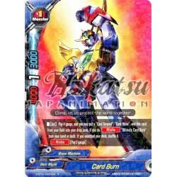 BFE H-BT01/0037EN Card Burn