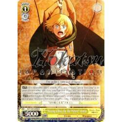 AOT/S35-E006 Paving a Way for the Future Armin