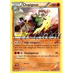 PKM 050/111 Chapignon