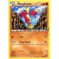PKM 056/111 Kungfouine