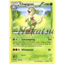 PKM 016/160 Chapignon