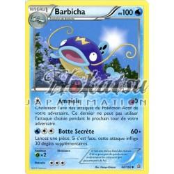 PKM 040/160 Barbicha
