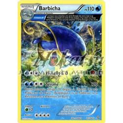 PKM 041/160 Barbicha