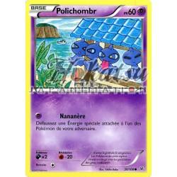 PKM 030/108 Polichombre