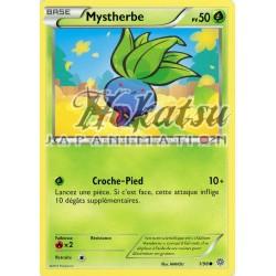 PKM 001/98 Mystherbe
