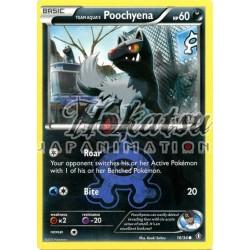 PKM 016/34 Team Aqua's Poochyena