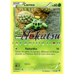 PKM 004/162 Cacnea