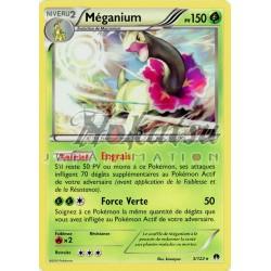 PKM 003/122 Meganium