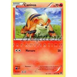 PKM 010/122 Caninos