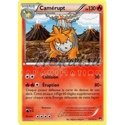 PKM 013/122 Camerupt