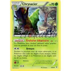 PKM 004/83 Chrysacier