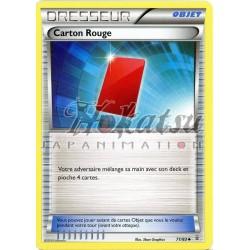 PKM 071/83 Red Card
