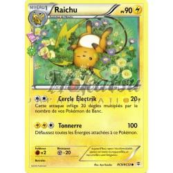 PKM RC09/RC32 Raichu