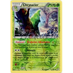 Reverse PKM 004/83 Chrysacier