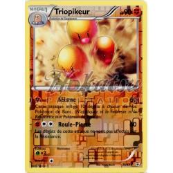 Reverse PKM 039/83 Triopikeur
