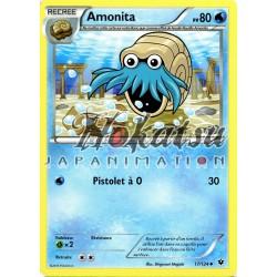 PKM 17/124 Amonita