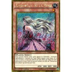 PGL2-FR003 Amoureux de la Rose