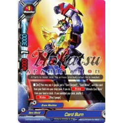 BFE D-BT02A/0026EN C Card Burn
