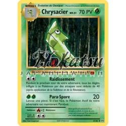 PKM 4/108 Chrysacier