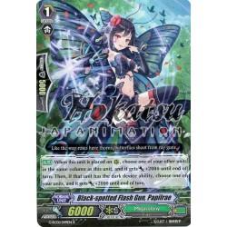CFV G-RC01/049EN R...