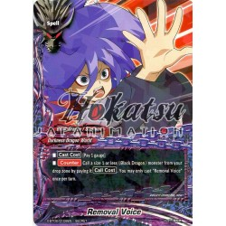 BFE X-BT02/0108EN SECRET Removal Voice