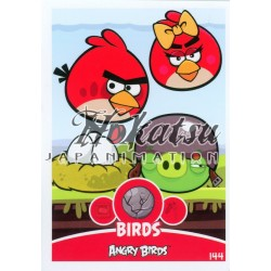 144/180  Commune Birds  Red,Girl-Bird,Helmet-Pig