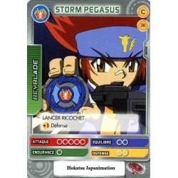 030/160 Commune Storm Pegasus