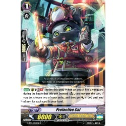 CFV G-BT12/055EN C  Protective Cat