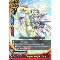 BFE X-BT03/0050EN U Dragon Knight, Todo