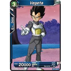 BT1-038 C Vegeta