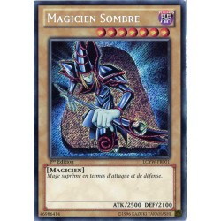 LCYW-FR001 Magicien Sombre