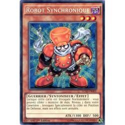 LC5D-FR002 Robot Synchronique