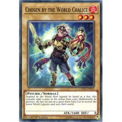 COTD-EN019 Choisi par le Calice du Monde / Chosen by the World Chalice