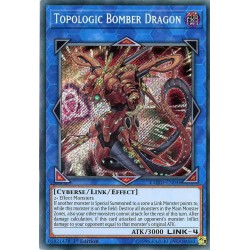 COTD-EN046 Dragon Bombe Topologique / Topologic Bomber Dragon