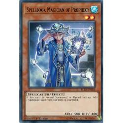 BLLR-EN050 Magicien du...