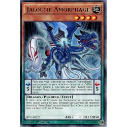 SHVI-FR027 Jalousie Amorphage