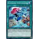 SHVI-FR067 Euphorie Syntoniseur