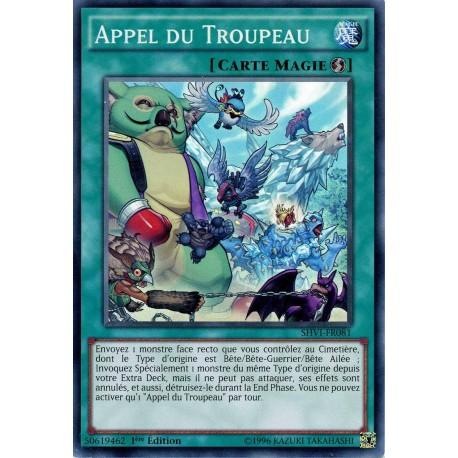 SHVI-FR081 Appel du Troupeau