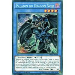 DRL2-FR018 Paladin of Dark Dragon