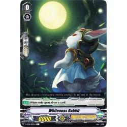 CFV V-BT01/057EN C  Whiteness Rabbit