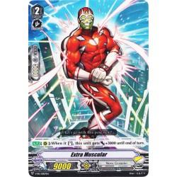 CFV V-PR/0007EN PR  Extra Muscular