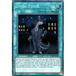 BLRR-EN015 Living Fossil / Fossile Vivant