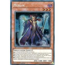 BLRR-EN073 Merlin / Merlin