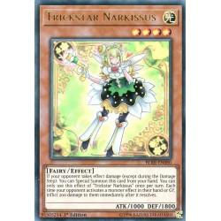 BLRR-EN080 Trickstar Narkissus
