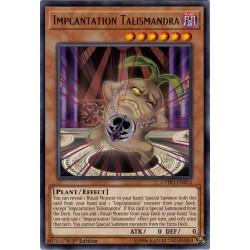 CYHO-EN013 Talismandra Lutincantation / Impcantation Talismandra