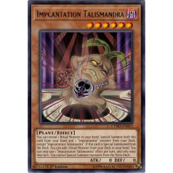 CYHO-EN013 Impcantation Talismandra