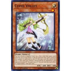 CYHO-EN024 Cupid Volley
