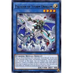 CYHO-EN031 Paladin du Dragon Orage / Paladin of Storm Dragon