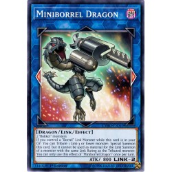 CYHO-EN040 Dragon Borrellemini / Miniborrel Dragon