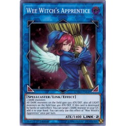 CYHO-EN049 Wee Witch's Apprentice